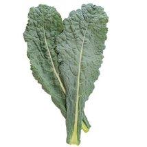 1/2 Oz Seeds of Black Magic Kale - $48.61