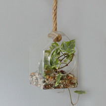All Glass Terrarium -Hanging House on Rope - $16.83