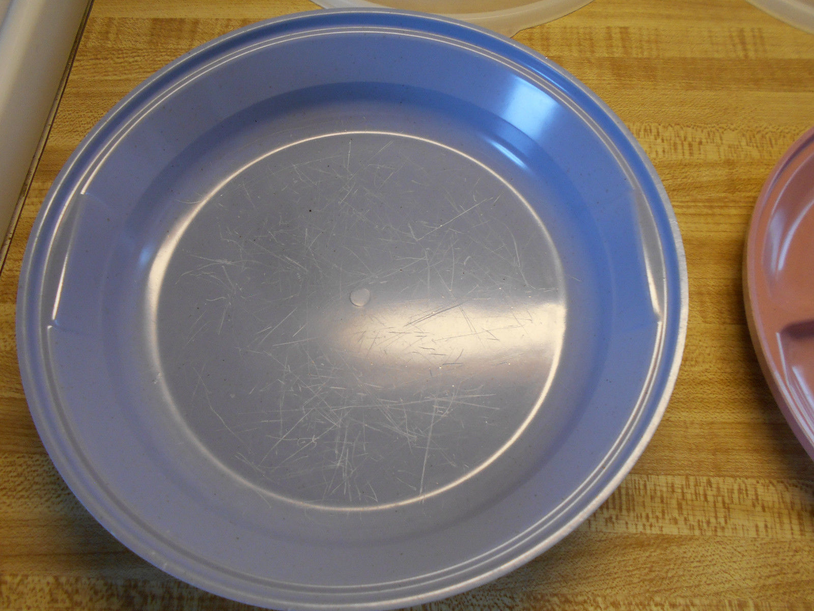 ... rubbermaid plates with covers ... & rubbermaid plates with covers and similar items