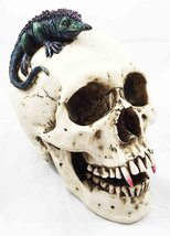 "Large 8.5"" Long Dracula Fanged Skull With Iguana Statue Halloween Spooky... - $27.67"