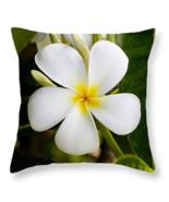 Plumeria of Hawaii, Throw Pillow, fine art, home decor, accent pillow - $41.99 - $69.99