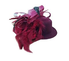 Beautiful Charming Feather Hairpin for Parties/Stage/Wedding,Hat,Claret