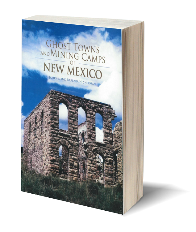 3d ghost towns and mining camps of new mexico