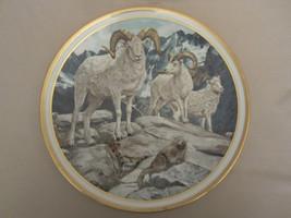 Dall Sheep Collector Plate Norman Adams American Wildlife Lenox - $40.00