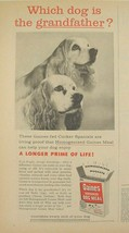 COCKER SPANIELS in 1956  Gaines Dog Meal Which Dog is the Grandfather? Ad - $9.99