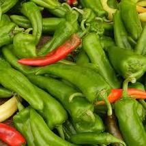 ANAHEIM PEPPER vegetables seeds 75 seeds - $12.65
