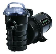 Pentair Sta-Rite Dynamo 1 hp Aboveground Pool Pumpe - $249.22