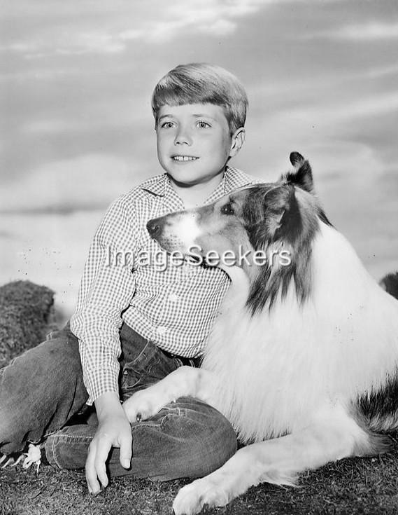 LASSIE 1962 the collie dog and John Provost tv show 4 x 6 new publicity reprint