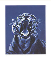 Jaques Monroy-Tigre No. 5 (Detail)-2009 Poster - $116.88