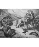 AESOP FABLES Animals Lion Bear Fox & Wolf - 1811 Original Etching Print - $30.60