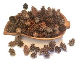 Mini pinecones for crafts or home decor - $8.00