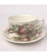 Johnson Brothers Harvest Time Brown Multicolor Teacup and Saucer - $9.65
