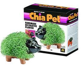 Chia Pet Handmade Decorative Planter- Pig - $29.99