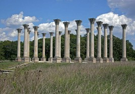 National Capitol Columns at the National Arboretum in Washington DC Photo Print - $7.05+