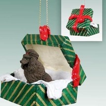 Conversation Concepts Poodle Chocolate Gift Box Green Ornament - $16.99