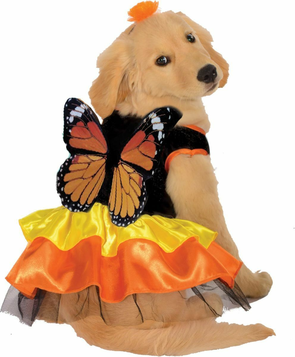 Rubies Beautiful Monarch Butterfly Pet Dog Animal Halloween Costume 887834