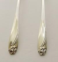 "1847 Rogers Daffodil Set of 5 Teaspoons 6"" Silverplate 1950's - $27.95"