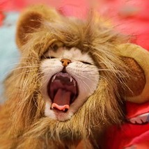 Namsan Lion Mane for Cats - Pet Dog Cat Halloween Costumes for Cats or S... - $10.84