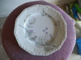 Rosenthal Brombeere dinner plate 6 available - $18.76
