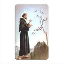 St Francis Patron Saint Of Animals Vinyl Magnet - $6.64