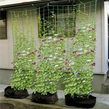 High Quality Mesh Nylon And Plastics Material Vines Plants Climbing Net ... - $8.90+