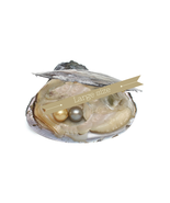 One Pearl Oysters with LARGE Pearls - Individually Wrapped 10 - 11 mm - $4.99
