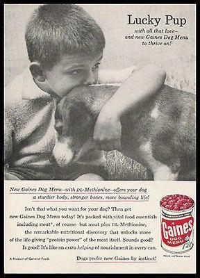 Primary image for Beagle Dog Gaines Lucky Pup 1957 Photo Ad