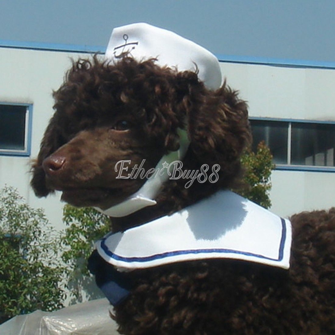 Small Pet Cat Dog Puppy Kitten Halloween Costume Sailor Suit Outfit Hat Cape