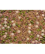 SHIP From US, 12K Seeds 2 oz Mix Salad Sprouting Microgreens, DIY  ZJ01 - $38.55
