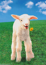 POSTER : ANIMALS : LAMB WITH DANDELION IN MOUTH#PP0238 RC34 Q - $24.00