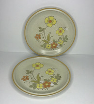 "Hearthside Garden Festival Stoneware Floral Dinner Plates 10 1/2"" Lot Of 2 Japan - $11.73"