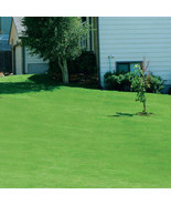 Canada Green™ Grass Seed 4lbs - $47.48