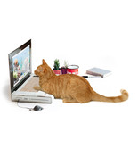 Laptop Computer Cardboard Cat Scratcher - For the cat who sits on your k... - $34.99