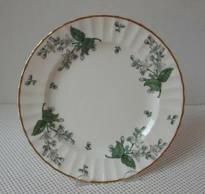 "Primary image for VALENCIA Royal Worcester 8 1/8"" SALAD PLATE (s) China England Green Leaf VGC"