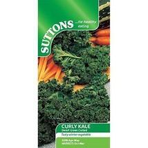 Suttons Seeds 166112 Graines de chou Kale frisé nain  - $26.03