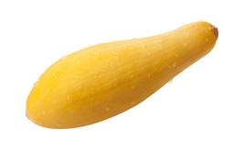 Squash Summer Straightneck Early Prolific Non GMO Heirloom 25 Seeds - $1.97