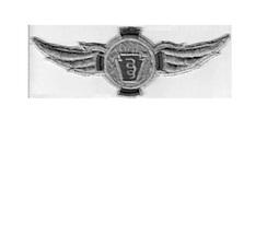 US Civil Air Patrol CAP Pennsylvaniaa Ranger School Wings Westover Airbase USAF  - $9.99
