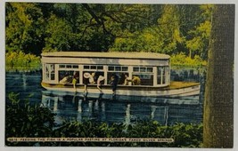 VTG Old Linen Postcard Feeding The Fish Popular Pastime Florida's Silver... - $12.24