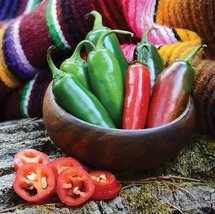 1/2 Oz Organic Seeds of Early Jalapeo Pepper Conventional & Organic - $49.40