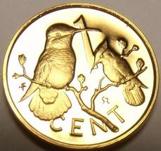 Rare Cameo Proof British Virgin Islands 1980 Cent~Hummingbird~3,421 Minted~Fr/Sh - $7.77