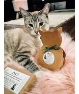 Organic Vegan Treat Catnip Boxed Handcreated Sachet. Cats Pet Crazy Toy ... - $6.44