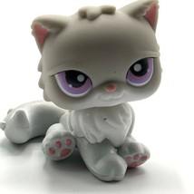 Littlest Pet Shop PERSIAN CAT  #263 Gray with Purple Dot Eyes - $9.46