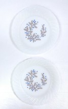 """Lot 2 Vtg Termocrisa Mexican Milk Glass 9"""" Plates Blue & Brown Floral Sw... - $16.65"""