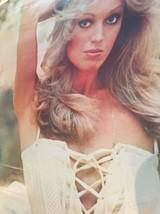 Susan Anton Vintage Door Poster 1979 / TV Star / Partial Nudity - $69.30