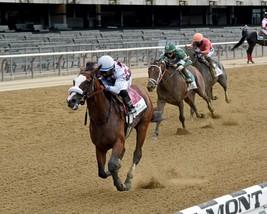 TIZ The Law Belmont Stakes Winner 2020 Vintage 16X20 Color Memorabilia P... - $29.95