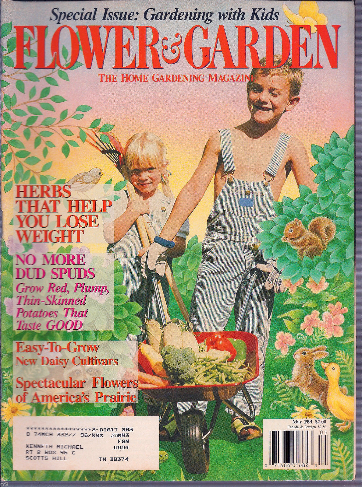 Primary image for Flower & Garden - The Home Gardening Magazine - May 1991