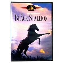 The Black Stallion (DVD, 1979, Widescreen)  Kelly Reno  Teri Garr  Micke... - $7.68