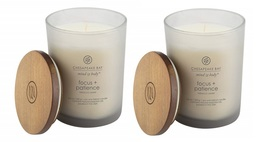Chesapeake bay tobacco cedar candle 2 pack thumb200