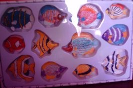 Tropical Fish Magnets image 2