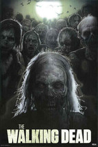 The Walking Dead POSTER Size 24in x 36in LIMITED EDITION FREE SHIPPING B... - $14.99